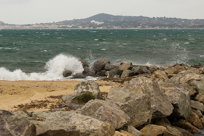 IMG_0676_a